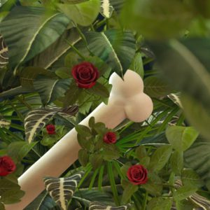 OH37 closup of bone in a 3D visual with red roses