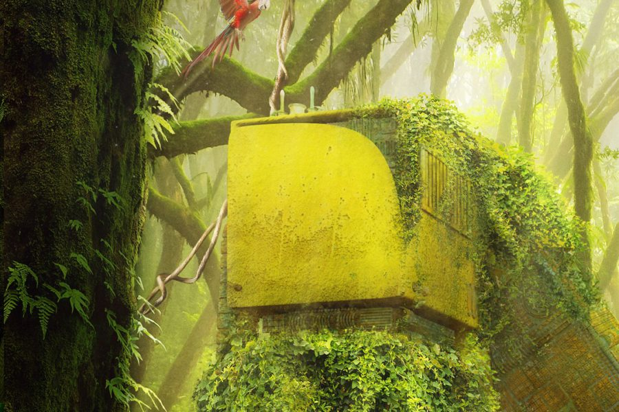 OH37 matte painting close up letter N corner in a forest with a parrot